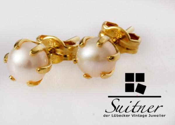 Perlen Ohrstecker in Gold Klassiker mit Zuchtperlen - modern